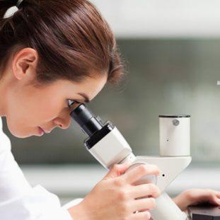 Relevancia de la Investigación en Salud